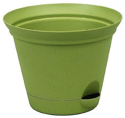 Misco Flare self-watering planter