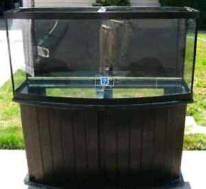 75 gallon bow front SALTWATER