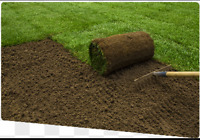General Contracting and Sod Installation starting at $1 psf.