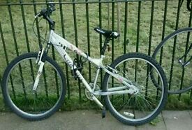 Silver mountain bike with flowers & wing mirror