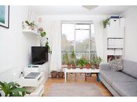 Large bright 1 double bedroom flat short let Brixton