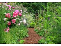 Experienced & Reliable Local Gardener