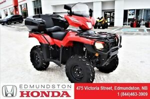 2018 Honda TRX500 Rubicon FM6J Back seat, windshield, pegs, helm