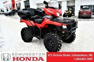 2018 Honda TRX500 Rubicon FA6J Back seat, windshield, pegs, helm