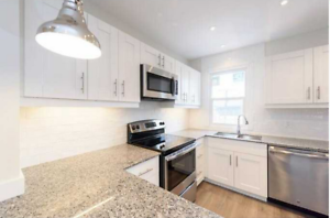 NEWLY RENOVATED HOME 3 + 1 LOCATED IN CENTRAL HAMILTON!!!!!