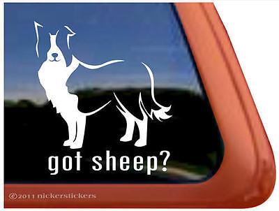 GOT SHEEP? BORDER COLLIE Dog Auto Vinyl Window Sticker Decal ~ Super Gift!