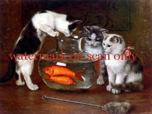 Vintg Art~3 Kitten Kittens Cat Cats~Fishbowl~Goldfish~Net~NEW Lge Note Cards