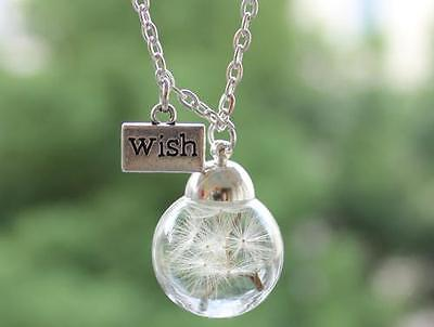 Make A Wish Necklace - MAKE A WISH Gift Terrarium Dandelion Seed Necklace Botanical Pendant