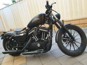 Harley Davidson Iron 883 Custom