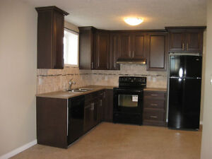 1 bedroom apartment for rent in Wainwright