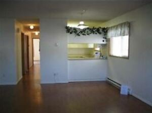 3 bedroom townhouse for rent (Near VIU & Westwood Lake)