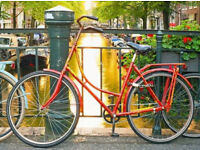 Classic ladies Omabike Omafiets dutch bike in red with 1 speed, size 19in - Welcome for ride