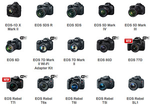 I BUY CAMERA CANON OR NIKON CALL ME 514-452-5909