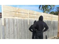 Fencing screening or fence extension wanted asap