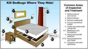 Rent a Bed Bug Heater and Get Rid of Bedbugs in 1 Treatment Oakville / Halton Region Toronto (GTA) image 6