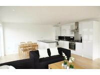 Three Double Bedroom Newly Built Flat In Brixton! Amazing Location