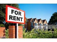 Professional seeking 2-3 bedroom property