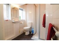 shower base, shower cubical, WC, sink basin, mirror, radiator and towel rail