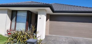A room available in craigieburn
