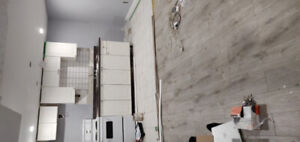 1 Bedroom Basement Apartment. Newly Renovated. Seperate Laundry