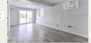 WALK OUT Basement apartment for rent