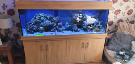 6ft tank and cabinet