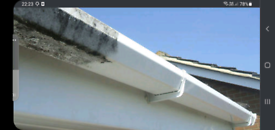 Gutter cleaning service.
