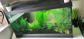 105L Fish Tank