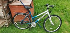 Ladies HARLEM TX 250 mountain bike for sale