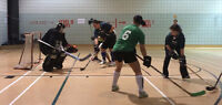 Goalie and players wanted for coed ball hockey team