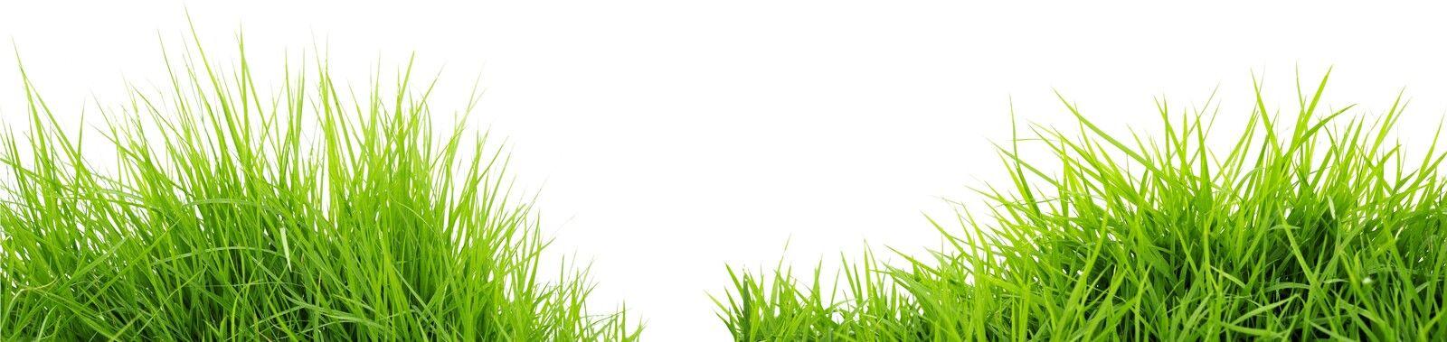 Naturra Shop -Bio Naturprodukte