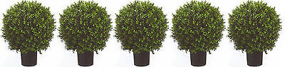 Ball Ivy Topiary (5 ARTIFICIAL 24
