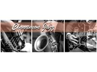 Established Southampton based jazz band seeks saxophonist due to current player moving to London.