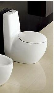 Beautiful Contemporary One-piece Toilet