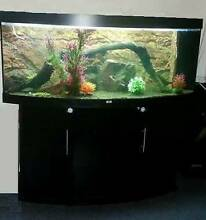 Juwel vision 450 fish tank Kurunjang Melton Area Preview