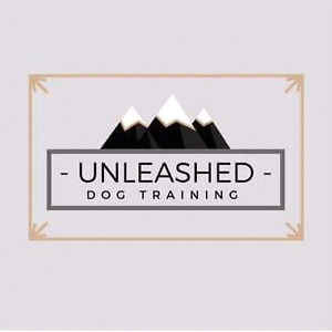 Professional dog boarding and training