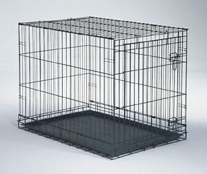 Medium size cage and a transportaion cage for ferret.
