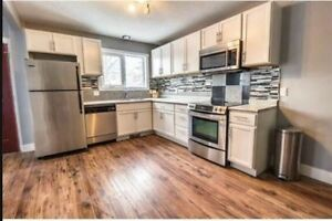 Brand new 3 bed room located in Eastview