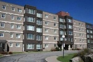Spacious Two Bedroom Condo: Stonegate II