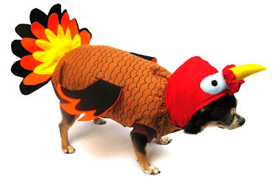 Thanksgiving Turkey Dog Costume - Great for Halloween !