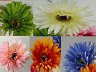 Unbranded Gerbera Flowers & Floral Décor