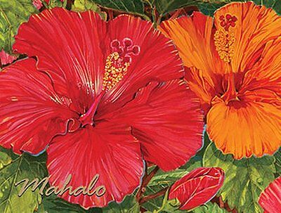 Hawaiian MAHALO Thank You CARD Boxed Set of 10 -- Red & Orange HIBISCUS Flowers