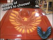 Trans Am Decals
