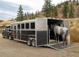 Oversized 4 Horse Trailer