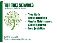 Tree surgery, Garden Maintenance