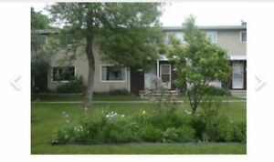 Great central locatio:Nice 3+1BDRM in beautiTownhouse 4 rent now