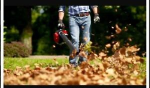 Contact John Wright's Lawn Services for LEAF REMOVAL Sarnia Sarnia Area image 7