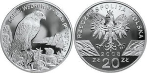 silver 20 zl Peregrine Falcon Sokol Wedrowny 2008 Proof Poland - <span itemprop='availableAtOrFrom'>Warszawa, Polska</span> - silver 20 zl Peregrine Falcon Sokol Wedrowny 2008 Proof Poland - Warszawa, Polska