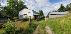 Horse Stalls/stable and pasture for rent in Halton Hills