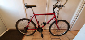 Raleigh North Cape Adult Mountain Bike